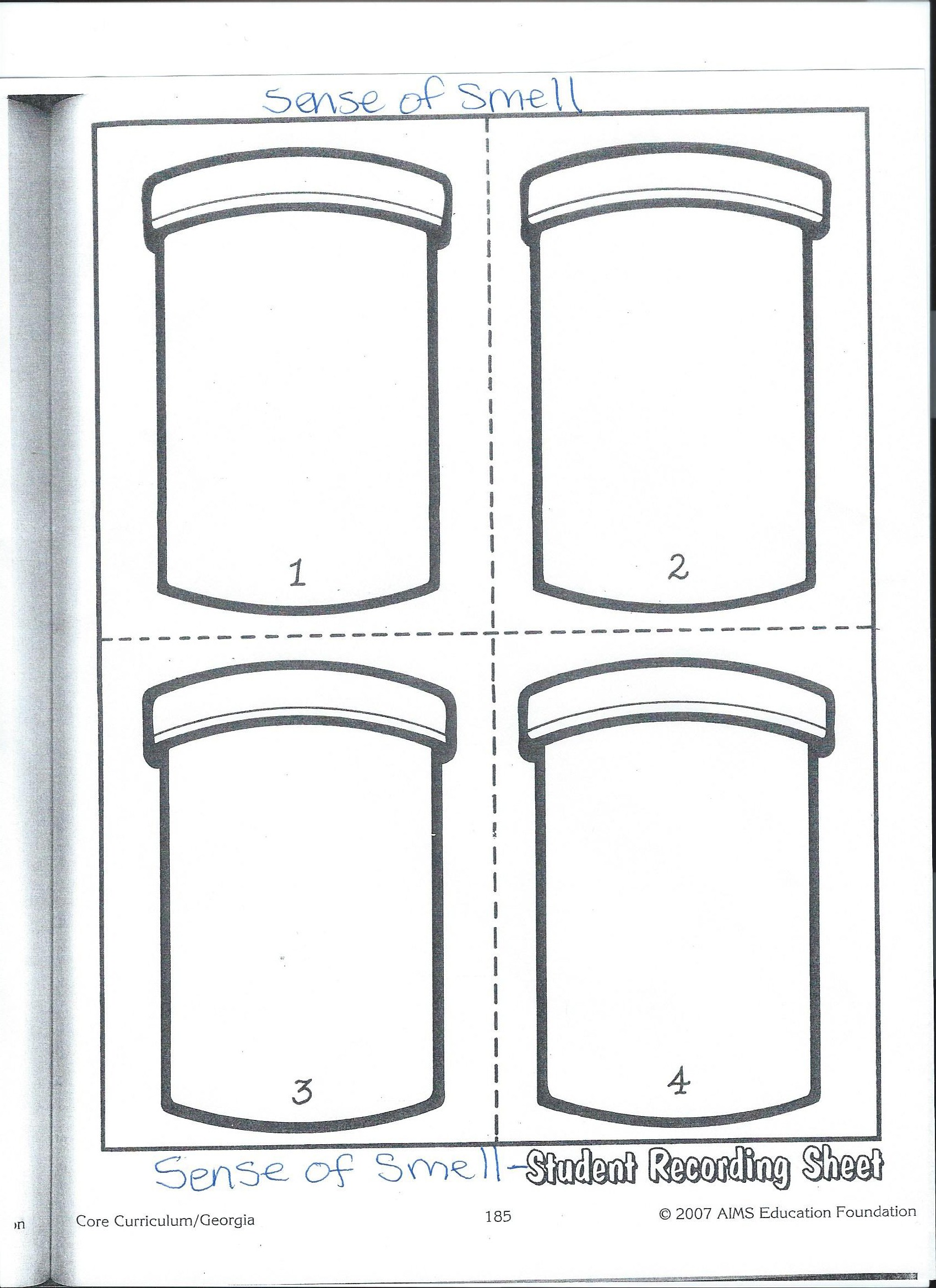 Sense Of Smell Worksheet - Davezan